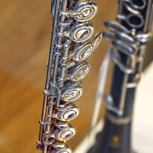 classical-instrument-682x1024
